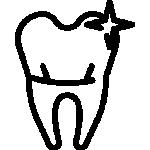equine-dentistry