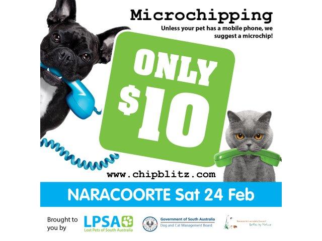ChipBlitz Microchipping